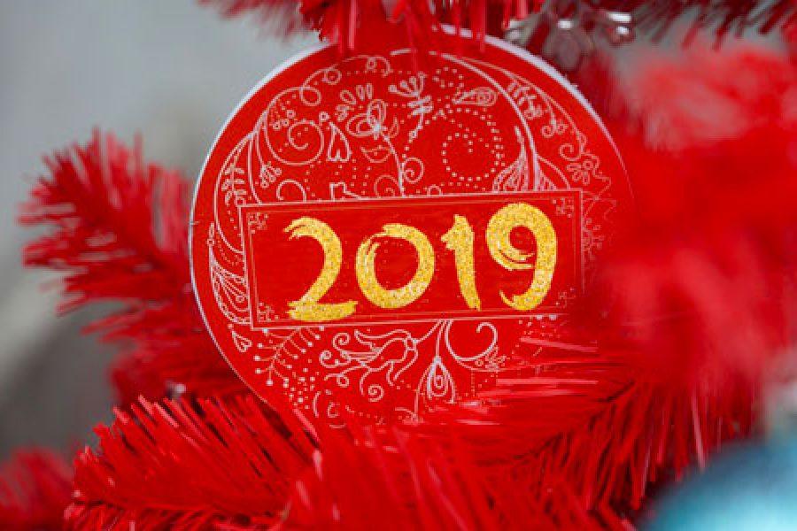 Auguri di Buon Anno e felicissimo 2019!!!
